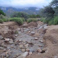 Water in arroyo, Sandia foothills, Чимэйо