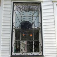 School Window with Raccoon Iron Work Grill, Амесвилл