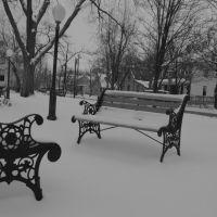 Snowy Park, Арлингтон-Хейгтс