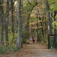Wildwood Preserve Metropark, Toledo Ohio, Браднер