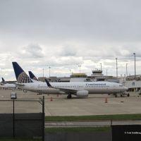 737 Concourse C, Брук-Парк