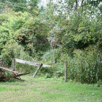 Farm remnants, Бруклин-Хейтс
