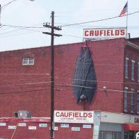 "Worlds Largest ""Bat""?  Only 1 block from Louisvilles other large bat, Варренсвилл-Хейгтс"