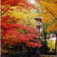 Lake View Cemetery, Ист-Кливленд
