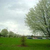 Primavera em Cincinnati EUA, Кенвуд