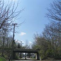 Pennsylvania Railroad Bridge, Ковингтон