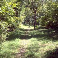 single trail around small pond, Ланкастер