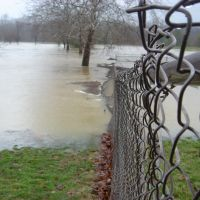 Chain Link in Flood, Маримонт
