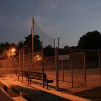 Todd Field- night, Ментор