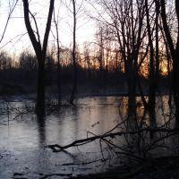 Frozen swamp - Chagrin River Park, Ментор