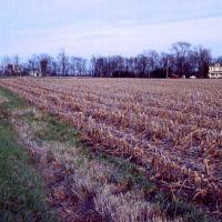 Chuckery, Ohio, Милфорд
