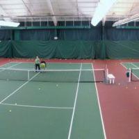 Wicker Tree Tennis Club, Минерва-Парк