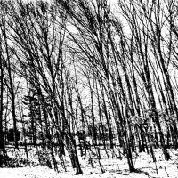 Morrow County Winter 2013, Мораин