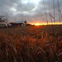 Farm off of Rt 42, Мэдисон