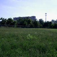 open field, Норвуд