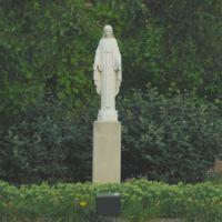 Mary ..... at Mercy Medical Center . Springfield, Ohio, Нортридж