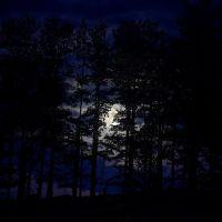 Moonlit night., Нью-Филадельфия