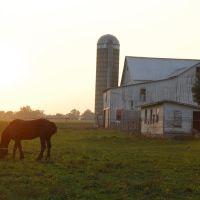 Amish barn, Оверлук