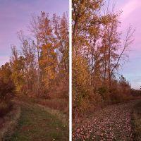 Two Views, Орегон