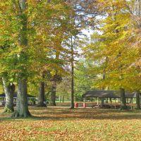 Orr Park, Оррвилл