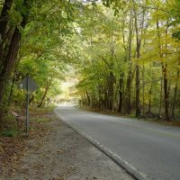 road oneil woods, Пенинсула