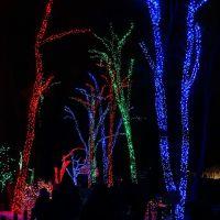 Toledo Zoo Lights, Россфорд