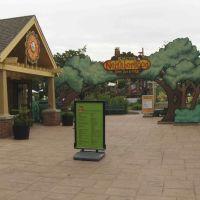Toledo Zoo, GLCT, Россфорд