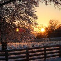 Ice Storm Christmas Eve 2004, Three Creeks Park Columbus, Ohio (USA), Сабина