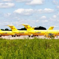 Where yellow airplanes go when they die, Сабина