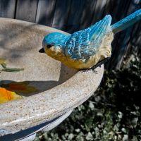 Birdbath 1, Саут-Евклид