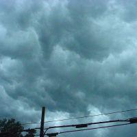 Storm summer 06, Силваниа