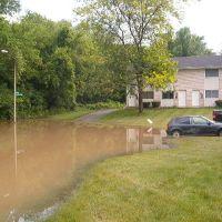 2006 Toledo Flood, Силваниа