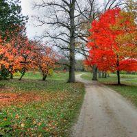 Cox Arboretum, Сиухога-Фоллс