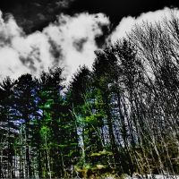 Morrow County Winter I71, Спенкервилл