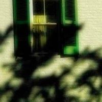Green Shutters, Трои
