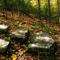 Stone Stairs in the Woods, Флетчер