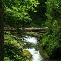 Clifton Gorge Rapids, Флетчер