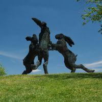 Dancing Bunnies, Харрод