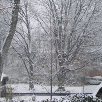 Snowy day, Чевиот