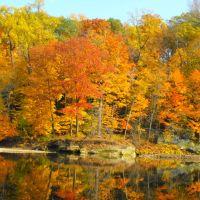 Fall foliage reflections., Элирия