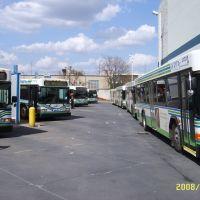 WRTA Lineup, Юнгстаун