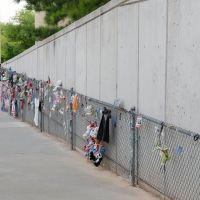 OCNM - The Fence, Маскоги