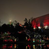 Christmas Lights at the Myriad Botanical Gardens, Оклахома
