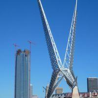 2011_12-31_Oklahoma City Oklahoma_P1020613_SkyDance Pedestrian Bridge, Салфур