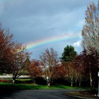 Photo of the Day, April 27, 2011.  Taken April 24, 2011.  Beaverton, Oregon., Бивертон