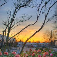 Sunset, Бивертон