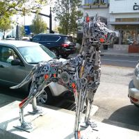 Dog, Лейк-Освего