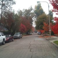 Loving Fall, Медфорд