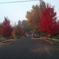 Loving Fall 2, Медфорд