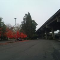 Loving Fall 3, Медфорд